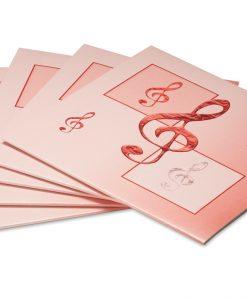10 Notenhüllen aus Karton